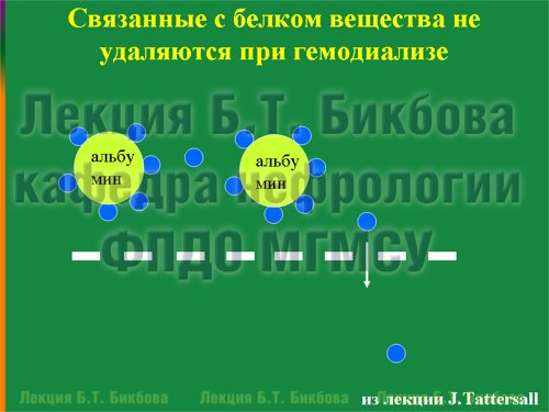 Связанные с белком вещества не удаляются при гемодиализе