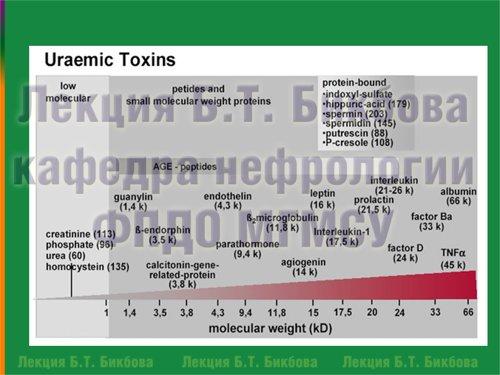 Молекулярный вес отдельных уремических токсинов