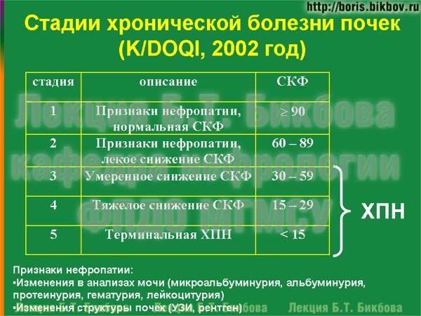 Стадии хронической болезни почек по K/DOQI