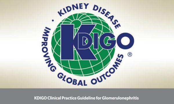 Рекомендации по диагностике и лечению хронических гломерулонефритов