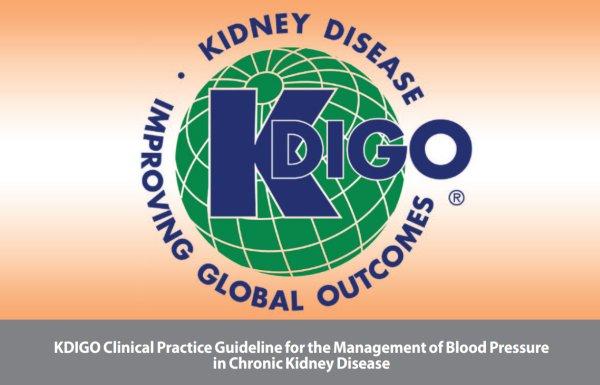 Клинические рекомендации KDIGO 2012 года по контролю артериального давления при хронической болезни почек