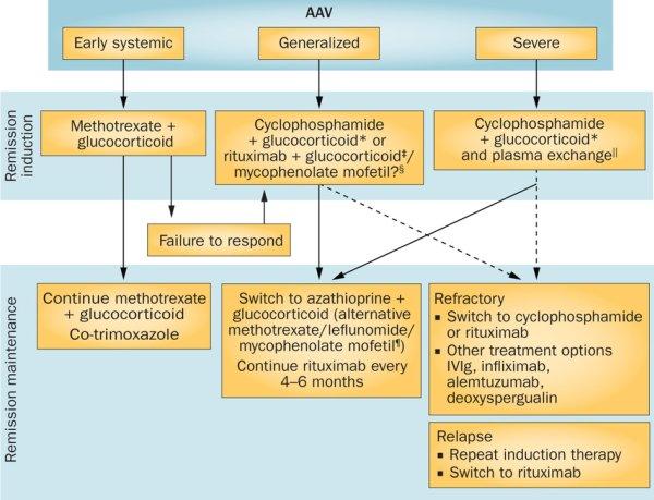 АНЦА-ассоциированные васкулиты: обзорные статьи в свободном доступе