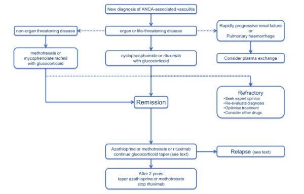 Клинические рекомендации по лечению АНЦА-ассоциированных васкулитов