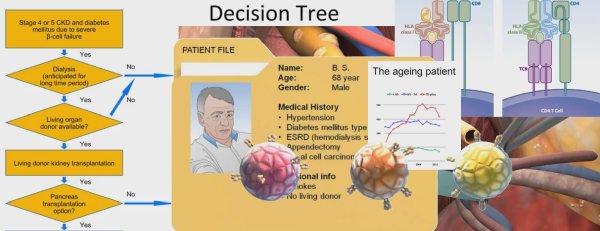 Бесплатный курс по трансплантации почки, поджелудочной железы и островковых клеток