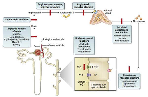 Гомеостаз калия, диагностика и лечение гиперкалиемии - конферениця KDIGO
